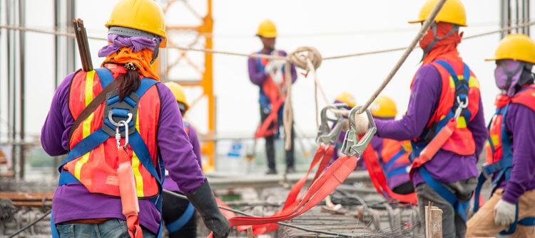Arnés de seguridad para los trabajos en altura
