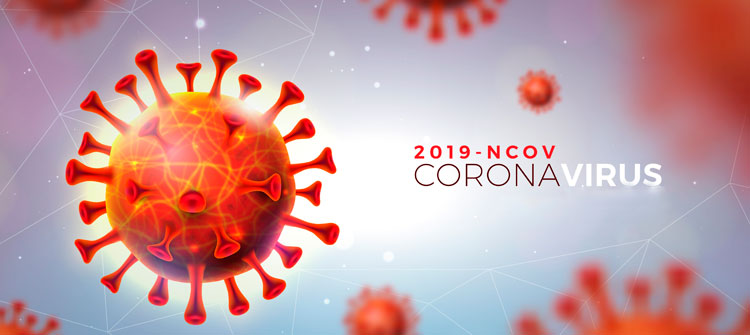 La solidaridad en tiempos de coronavirus