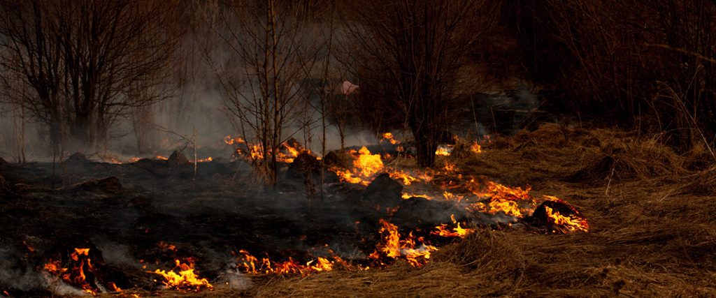 Consejos para prevenir los incendios en el campo